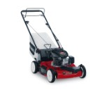 "22"" Variable Speed Mower (20377)"