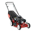 "53 cm (21"") Heavy-Duty Trim Mower (22186TE)"