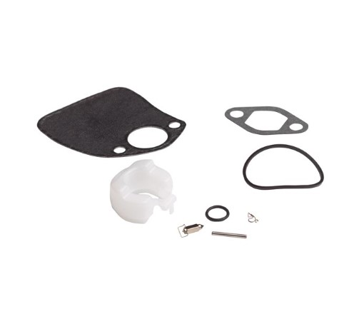 Carburetor Float and Needle Kit